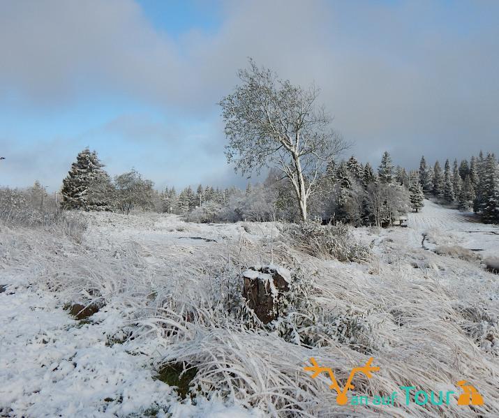 Schnee Norwegen Skandinavien