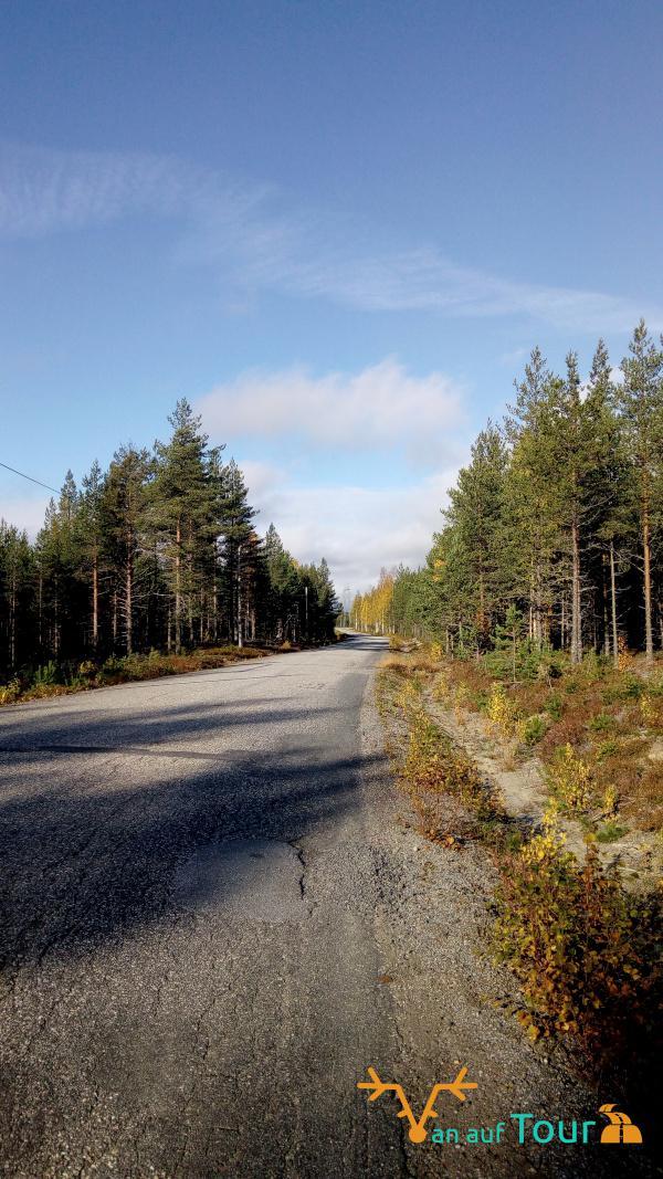 Straße Mittelskandinavien